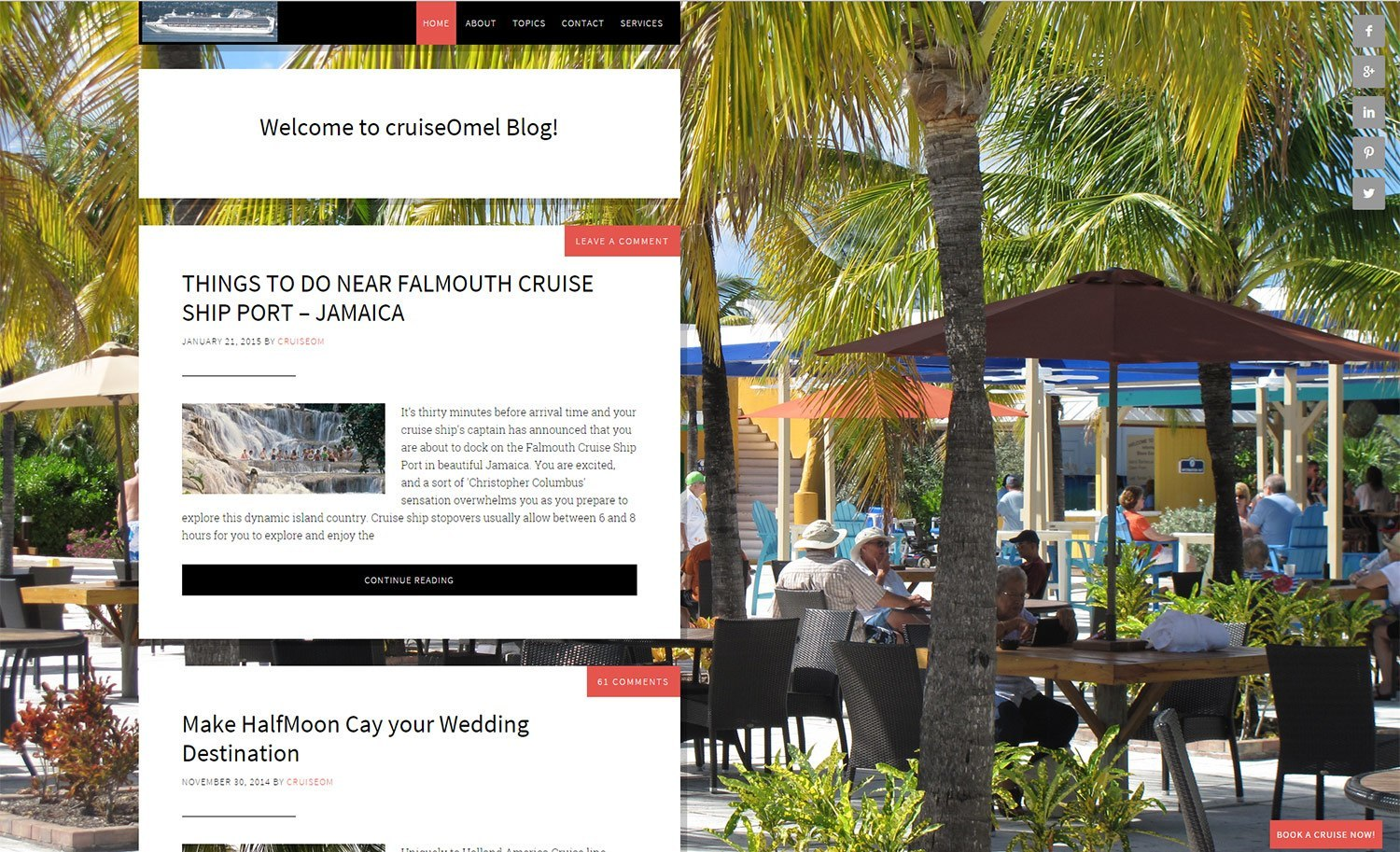 Website Design Cruise Project